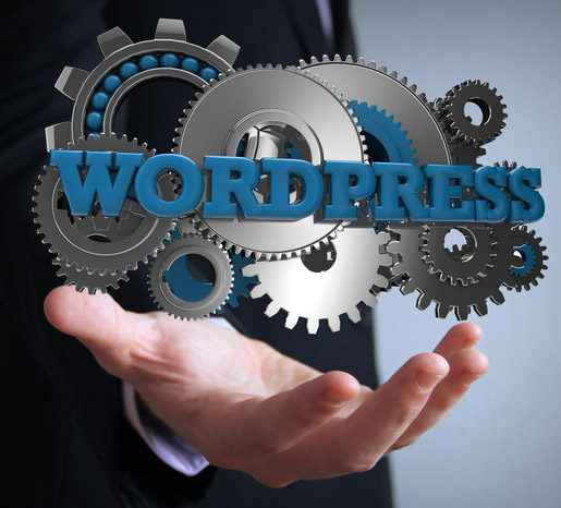 Expert Wordpress Nice